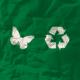 social and environmental entrepreneurs